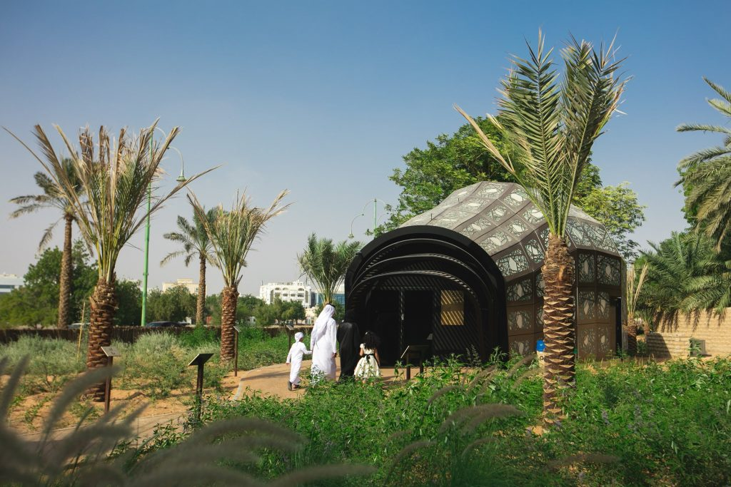 al ain oasis pictures