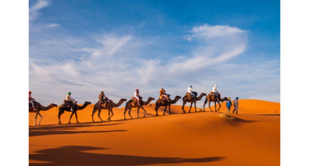 camel trakking safari