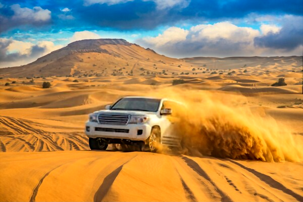 Best Desert Safari
